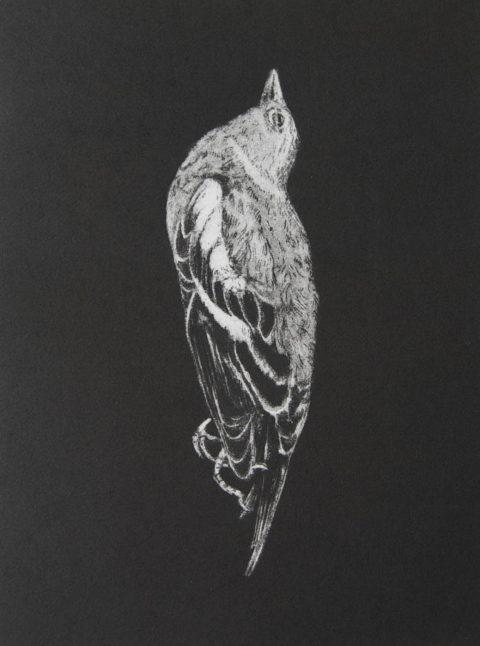 Threnody (Miniprint I) - Etching
